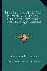 Etude Sur La Detention Preventive Et La Mise En Liberte Provisoire: D'Apres La Loi Du 14 Juillet 1865 (1877) - Charles Flamand