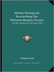 Montan-Geologische Beschreibung Des Pribramer Bergbau-Terrains: Und Der Verhaltnisse In Der Grube (1892)