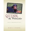 Quinn, the Rottweiler - Turner Maryly Turner