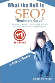 """What the Hell Is Seo """"Beginners Guide"""""""
