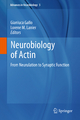 Neurobiology of Actin - Gianluca Gallo; Lorene M. Lanier