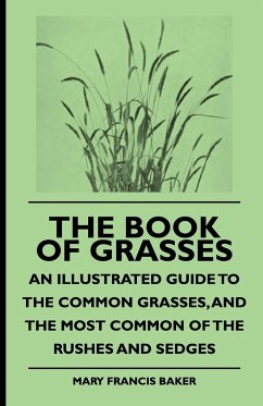 The Book of Grasses - An Illustrated Guide to the Common Grasses, and the Most Common of the Rushes and Sedges - Baker, Mary Francis Colton, Buel Preston