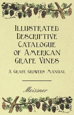 Illustrated Descriptive Catalogue of American Grape Vines - A Grape Growers Manual - Meissner Various