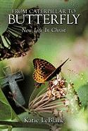 From Caterpillar to Butterfly: New Life in Christ