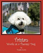 Tristan Works as a Therapy Dog