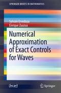 Numerical Approximation of Exact Controls for Waves - Enrique Zuazua, Sylvain Ervedoza