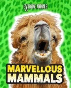 Marvellous Mammals als eBook Download von Isabel Thomas - Isabel Thomas