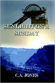 Sunlight on a Sunday - Allan Jones