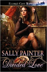 Divided Love - Sally Painter