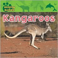 Kangaroos - Christina Wilsdon