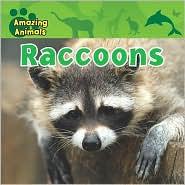 Raccoons - Karen Baicker