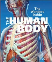 The Wonders Inside: The Human Body