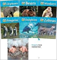 Zoo Animals - Carey Molter