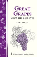 Great Grapes - Annie Proulx