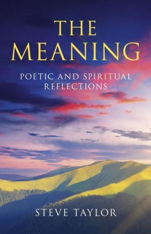 The Meaning - Steve Taylor
