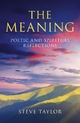 Meaning - Steve Taylor