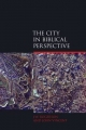 City in Biblical Perspective - J. W. Rogerson; John Vincent