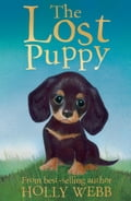 The Lost Puppy - Holly Webb, Sophy Williams