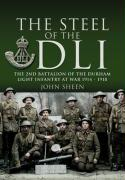 The Steel of the DLI: 2nd Battalion of the Durham Light Infantry, 1914-1918