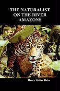 The Naturalist on the River Amazons: A Record of Adventures, Habits of Animals, Sketches of Brazilian and Indian Life, and Aspects of Nature Under the