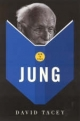 How to Read Jung - David Tacey