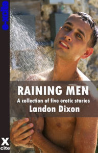 Raining Men: A collection of gay erotic stories - Landon Dixon