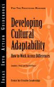 Developing Cultural Adaptability: How to Work Across Differences