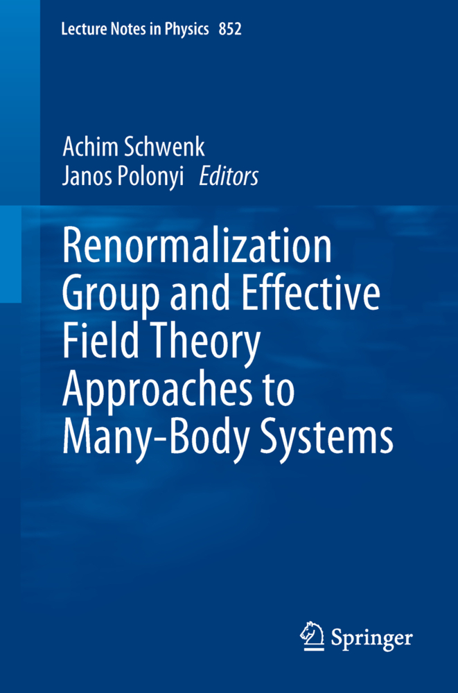 Renormalization Group and Effective Field Theory Approaches to Many-Body Systems als Buch von - Springer-Verlag GmbH