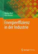 Markus Blesl;Alois Kessler: Energieeffizienz in der Industrie