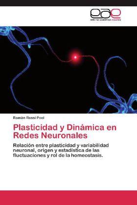 Plasticidad y Dinámica en Redes Neuronales - Relación entre plasticidad y variabilidad neuronal, origen y estadística de las fluctuaciones y rol de la homeostasis. - Rossi Pool, Román