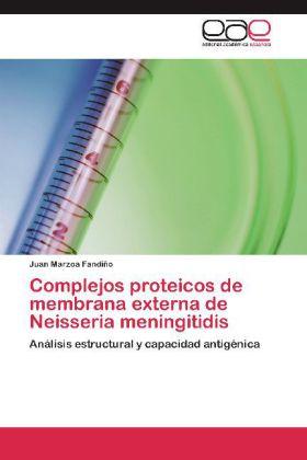 Complejos proteicos de membrana externa de Neisseria meningitidis - Análisis estructural y capacidad antigénica - Marzoa Fandiño, Juan