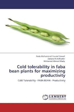 Cold tolerability in faba bean plants for maximizing productivity