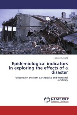 Epidemiological indicators in exploring the effects of a disaster