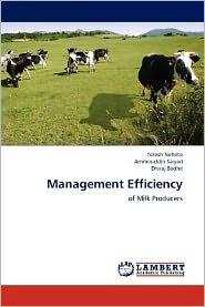 Management Efficiency - Nilesh Nehete, Dhiraj Badhe, Ammiruddin Saiyad