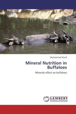 Mineral Nutrition in Buffaloes