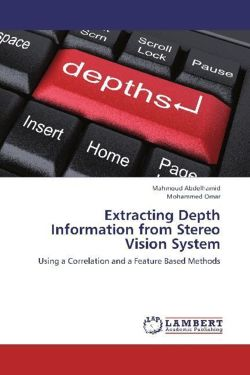Extracting Depth Information from Stereo Vision System