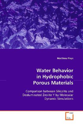 Water Behavior in Hydrophobic Porous Materials - Comparison between Silicalite and DealuminatedZeolite Y by Molecular Dynamic Simulations