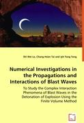 Numerical Investigations in the Propagations and Interactions of Blast Waves