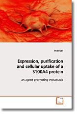 Expression, purification and cellular uptake of a S100A4 protein