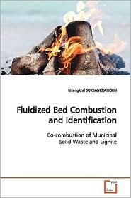 Fluidized Bed Combustion And Identification - Kriengkrai Suksankraisorn