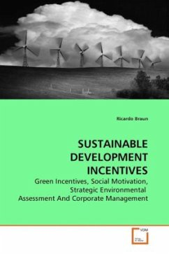 SUSTAINABLE DEVELOPMENT INCENTIVES - Braun, Ricardo