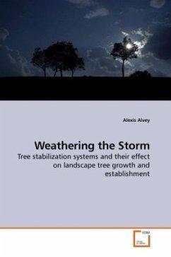 Weathering the Storm - Alvey, Alexis