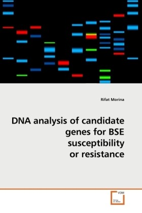 DNA analysis of candidate genes for BSE susceptibility or resistance als Buch von Rifat Morina - Rifat Morina
