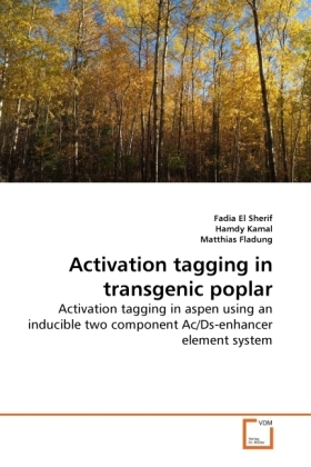 Activation tagging in transgenic poplar - Activation tagging in aspen using an inducible two component Ac/Ds-enhancer element system - Sherif, Fadia El / Kamal, Hamdy / Fladung, Matthias