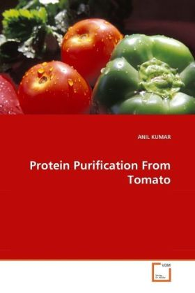 Protein Purification From Tomato - Kumar, Anil