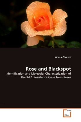 Rose and Blackspot - Identification and Molecular Characterization of the Rdr1 Resistance Gene from Roses - Yasmin, Aneela