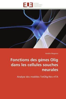 Fonctions des gènes Olig dans les cellules souches neurales - Analyse des modèles TetOlig:Nes-rtTA - Wegener, Amélie