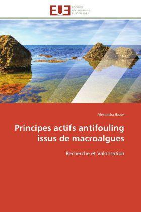 Principes actifs antifouling issus de macroalgues - Recherche et Valorisation - Bazes, Alexandra