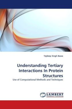 Understanding Tertiary Interactions In Protein Structures: Use of Computational Methods and Techniques