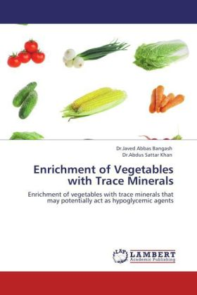 Enrichment of Vegetables with Trace Minerals als Buch von Dr. Javed Abbas Bangash, Dr. Abdus Sattar Khan - Dr. Javed Abbas Bangash, Dr. Abdus Sattar Khan